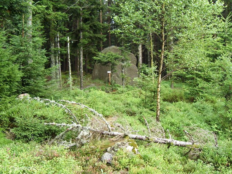 Photo du Monument Historique Deux menhirs dits Pierres-Fittes situé à Remiremont