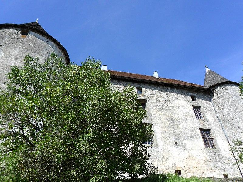 Photo du Monument Historique Château situé à Saint-Baslemont