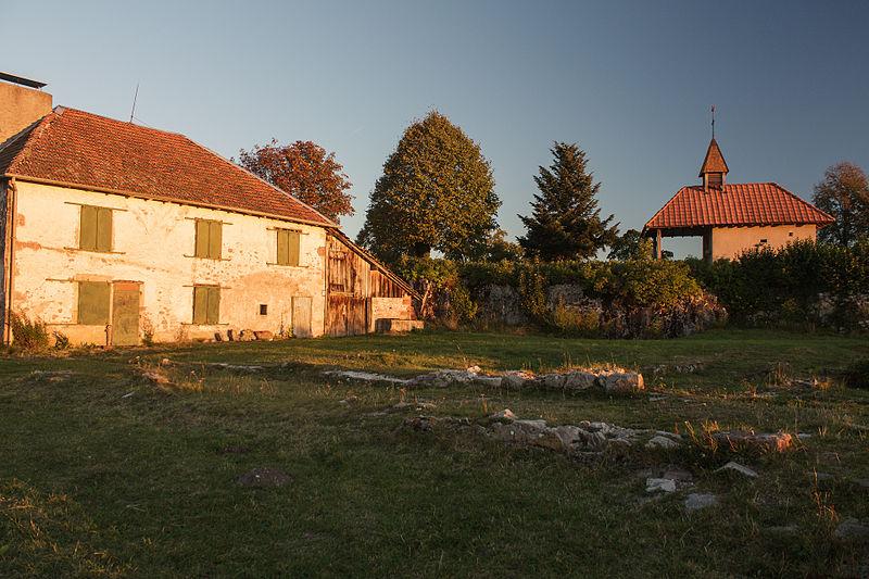 Photo du Monument Historique Site archéologique du Saint-Mont (également sur commune de Saint-Etienne-lès-Remiremont) situé à Saint-Amé
