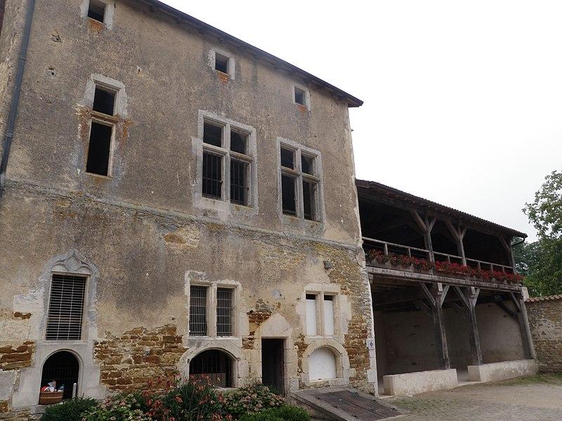 Photo du Monument Historique Château situé à Dommartin-sur-Vraine