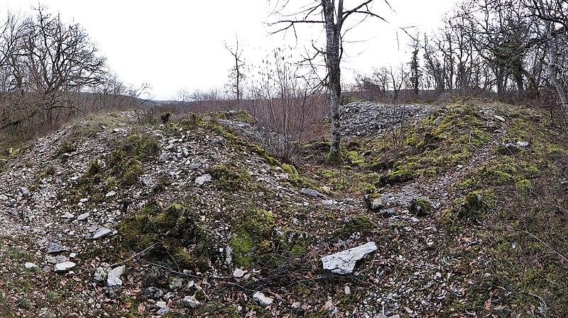 Photo du Monument Historique Tumulus du tertre à Tormancy situé à L'Isle-sur-Serein