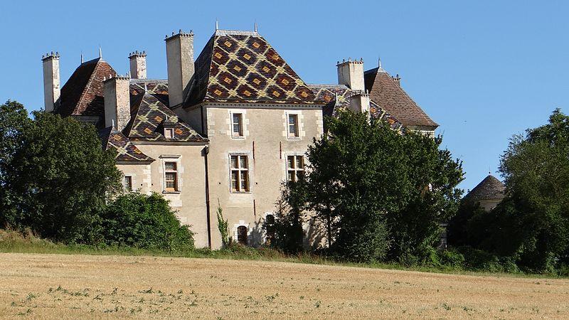 Photo du Monument Historique Château (restes) situé à Jouancy