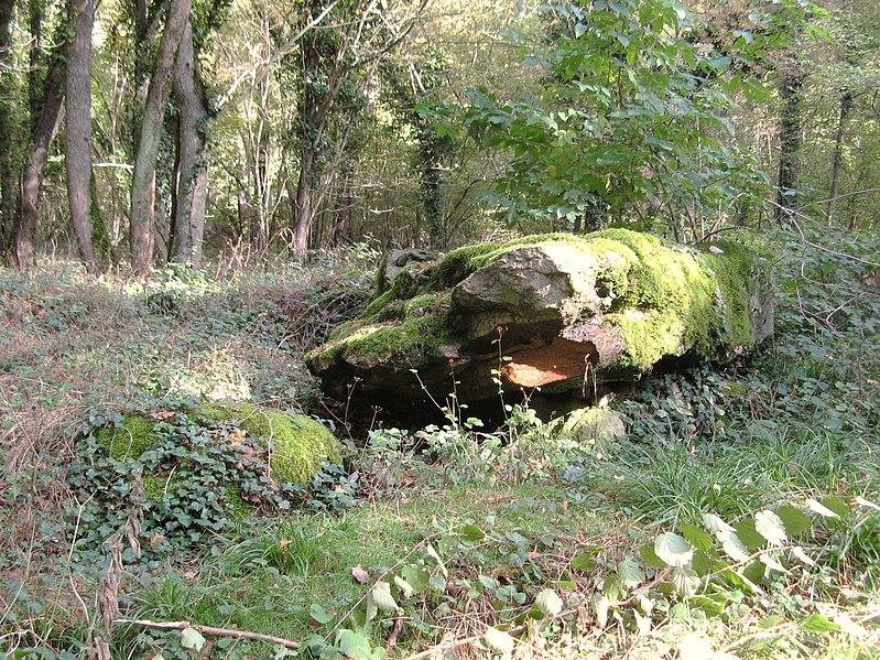 Photo du Monument Historique Grand et petit dolmens de Trainel situé à Saint-Maurice-aux-Riches-Hommes