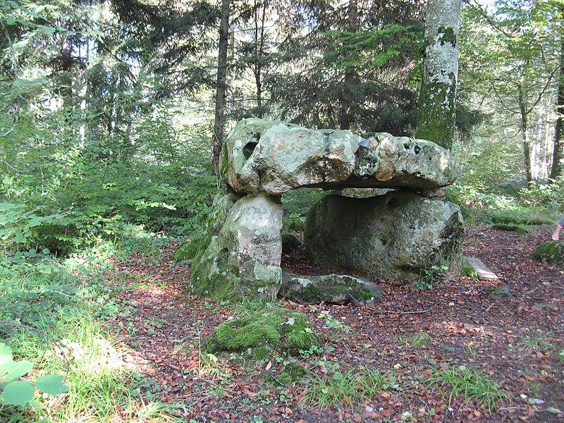 Photo du Monument Historique Dolmen dans la forêt domaniale de Vauluisant situé à Saint-Maurice-aux-Riches-Hommes