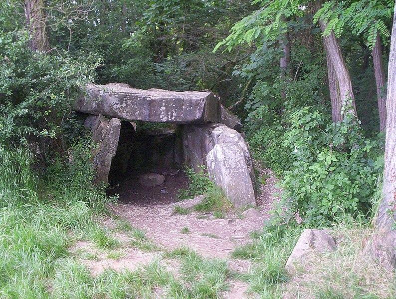 Photo du Monument Historique Dolmen dit la Pierre-Levée situé à Janville-sur-Juine