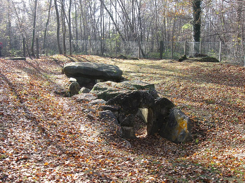 Photo du Monument Historique Dolmen de la Pierre Plate situé à Isle-Adam (L')