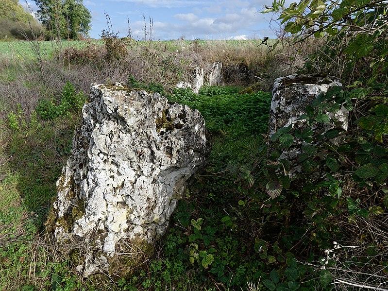 Photo du Monument Historique Dolmen de Coppière situé à Montreuil-sur-Epte