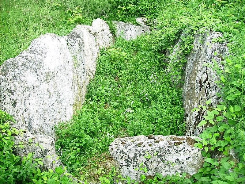 Photo du Monument Historique Allée mégalithique sépulcrale situé à Presles