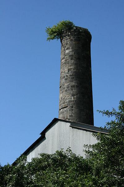 Photo du Monument Historique Cheminée dite de Quartier Français situé à Sainte-Suzanne