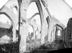 Chapelle Notre-Dame-du-Murier - Ruines, intérieur : nef et bas-côté, vue en diagonale