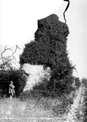 Restes de la villa romaine de Lacou-Dausena - Restes d'un pan de mur couvert de végétation, homme en pose devant