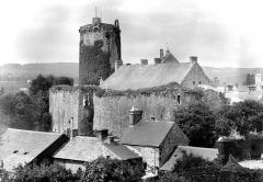 Restes du château - Donjon et fortifications, ensemble