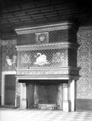 Domaine de Chenonceau - Intérieur : cheminée au cygne