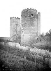 Ancien château - Façade sur la Loire : Tours