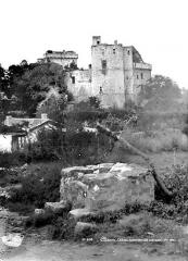 Château de Clisson - Ensemble sud-ouest