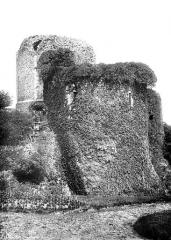 Ruines du donjon - Vue d'ensemble