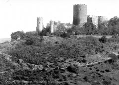 Vestiges du château de Châteaubrun - Ensemble est