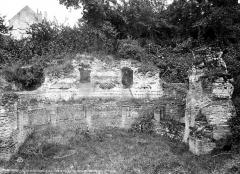 Nymphée gallo-romain (restes) - Restes des ruines romaines : Le sudatorium