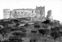 Château des Templiers - Ensemble nord