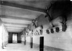 Domaine de Mesnières - Galerie des Cerfs : Vue intérieure
