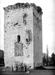 Tour de Veyrines - Ensemble sud-ouest