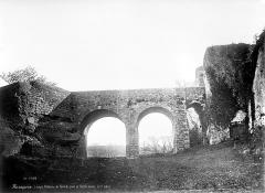 Ruines du château dit de Terride - Pont