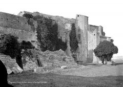 Abbaye de Vignogoul - Ensemble sud