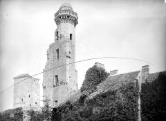 Château du Grand Pressigny - Donjon carré et tour de Vironne, côté nord