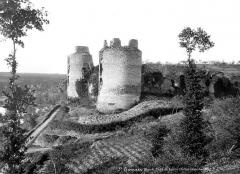 Ruines du château - Tours
