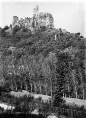 Ruines du château Chalusset - Vue d'ensemble prise en contrebas