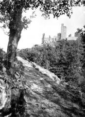 Ruines du château Chalusset - Vue d'ensemble prise d'un chemin