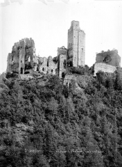Ruines du château Chalusset - Ensemble nord-ouest