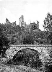 Ruines du château Chalusset - Ensemble est
