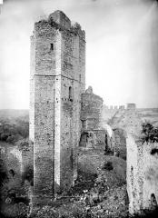 Ruines du château Chalusset - Donjon