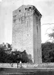 Domaine de Saint-Loup - Donjon