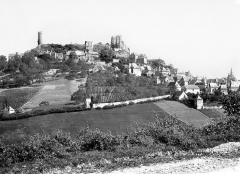Vestiges du château - Vue générale prise du nord
