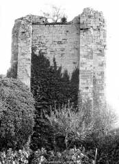 Vestiges du château - Donjon carré