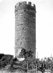 Vestiges du château - Tour de César