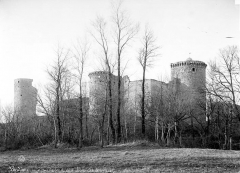 Ruines du château - Vue d'ensemble des ruines