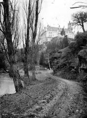 Château de Veauce - Vue générale prise d'un chemin
