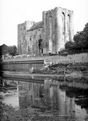 Château de Niort - Vue d'ensemble du côté de la rivière