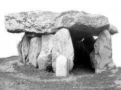 Dolmen de Crucuno - Vue d'ensemble