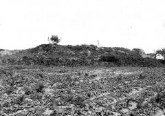 Tumulus à menhir du Moustoir-Carnac - Tumulus avec dolmen