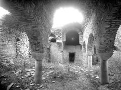 Abbaye de Saint-Martin du Canigou - Eglise : Vue intérieure de la nef vers le choeur