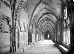 Ancienne cathédrale Saint-Etienne et son cloître - Cloître : Vue intérieure de la galerie est vers le sud
