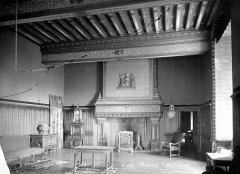 Château - Salon : Vue d'ensemble la cheminée