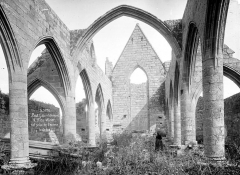 Chapelle Notre-Dame-du-Murier - Vue intérieure de la nef vers le choeur (ruines)