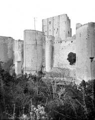 Château et son enceinte - Vieux château : Tours et donjon