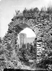 Ruines du château Chalusset - Tour de la Jeannette
