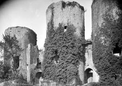 Ruines du château - Vue extérieure, du côté de l'entrée